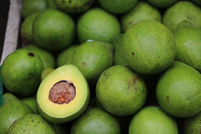 čerstvé avokáda